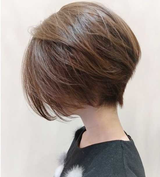 2020 Asian Short Hair-10