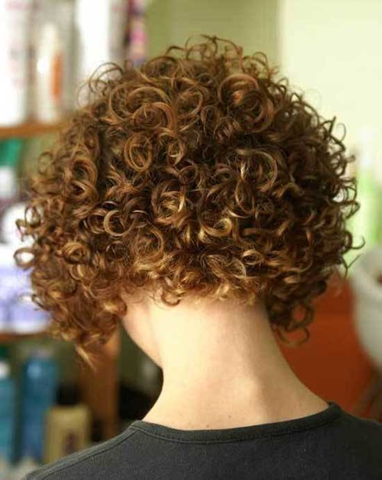 Back View of Bob Hairstyles for Curly Hair-13